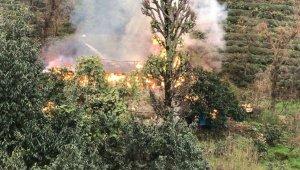 Çayeli'de ahır yangını