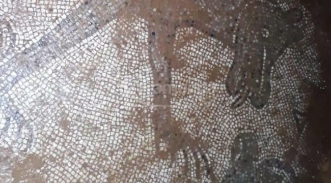 Evinin bahçesindeki mozaikleri çıkarırken yakalandı