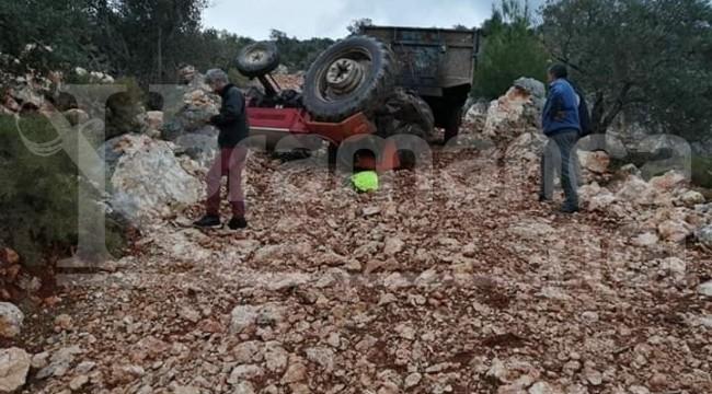 Kaş'ta zeytin yüklü traktör devrildi 1 yaralı