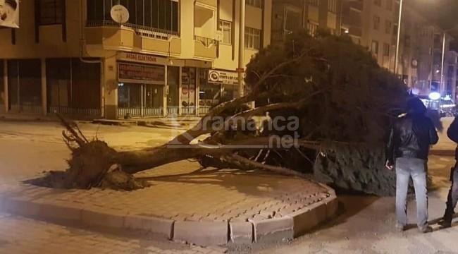 Kulu'da fırtına ağacı yerinden söktü