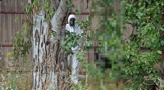 25 yaşındaki şahıs ağaçta asılı halde bulundu