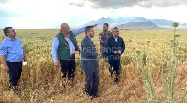 Milletvekili Selman Oğuzhan Eser dolu hasarını yerinde inceledi