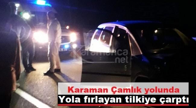 Karaman'da otomobil yola fırlayan tilkiye çarptı