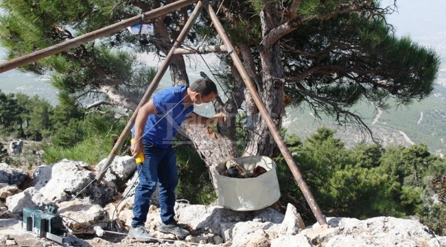 Kızılova Obruk Peyniri mağaralardan çıkarılmaya başlandı