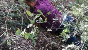 Çete lideri ormanda çalılıklar arasında yakalandı