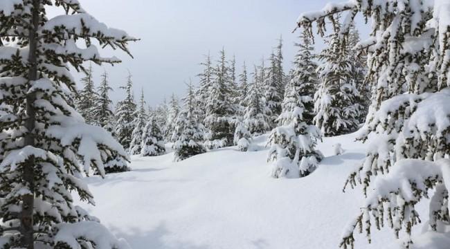 Başyayla'ya yakan kar, kartpostallık görüntüler oluşturdu