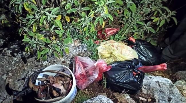 Evde keçi derisi çıkınca 120 bin lira cezai işlem yapıldı