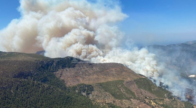 Bazı evler boşaltıldı, Aydıncık'taki orman yangını büyüyor