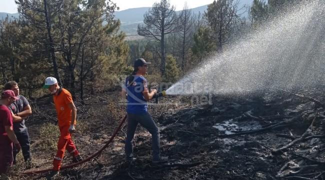 Doğanhisar'daki orman yangını kontrol altına alındı