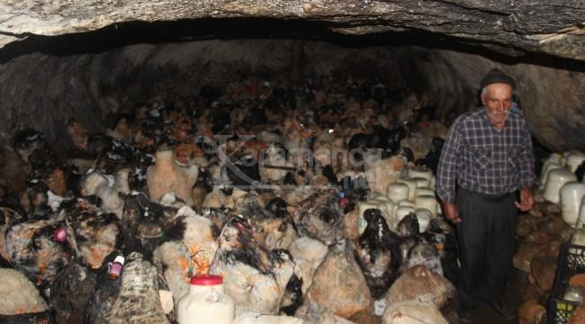 Peynirler 150 gün bu mağarada bekletiliyor
