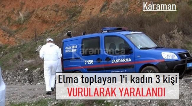 Karaman'da elma toplayan şahıslar vurularak yaralandı