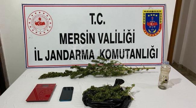 Erdemli ve Tarsus'ta uyuşturucu operasyonu